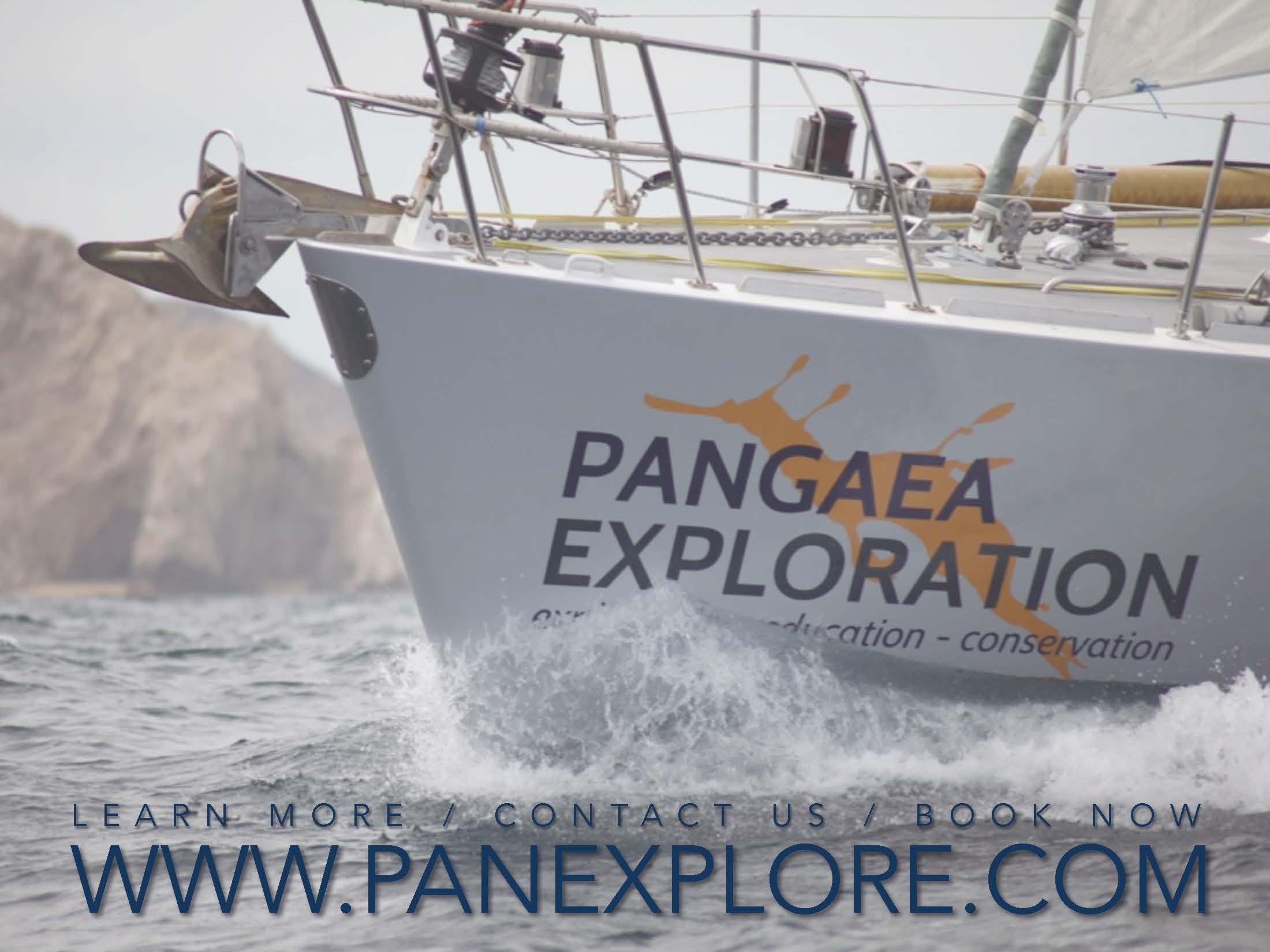 PanExplore ORGANIZATIONS (for web)_Page_8